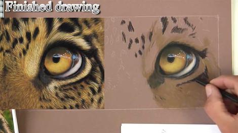 Leopard Eyes - Pastels