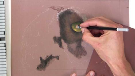 Owl - Pastels