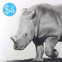 Baby Rhino - Graphite