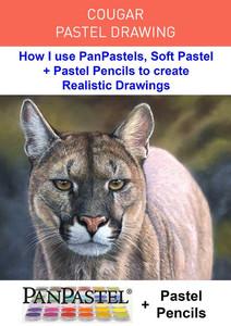 Cougar - Pastel Drawing