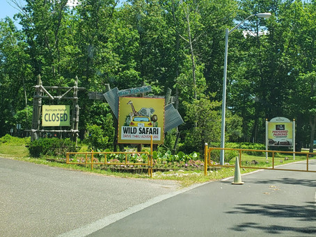Tips2LiveBy's Things To Do – Six Flags Great Adventure & Safari!