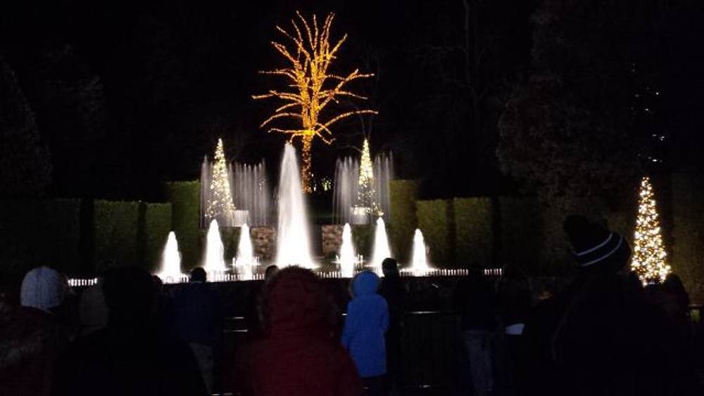 A picture of the fountains lit up with trees decorated in the background.