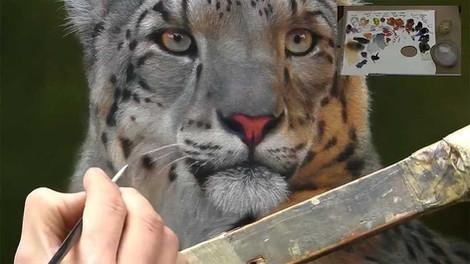Snow Leopard - Oils