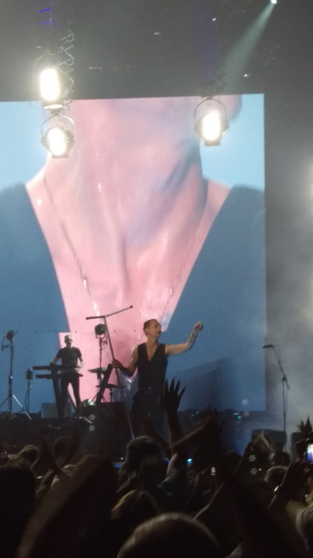 Dave Gahan of Depeche Mode performing on stage.