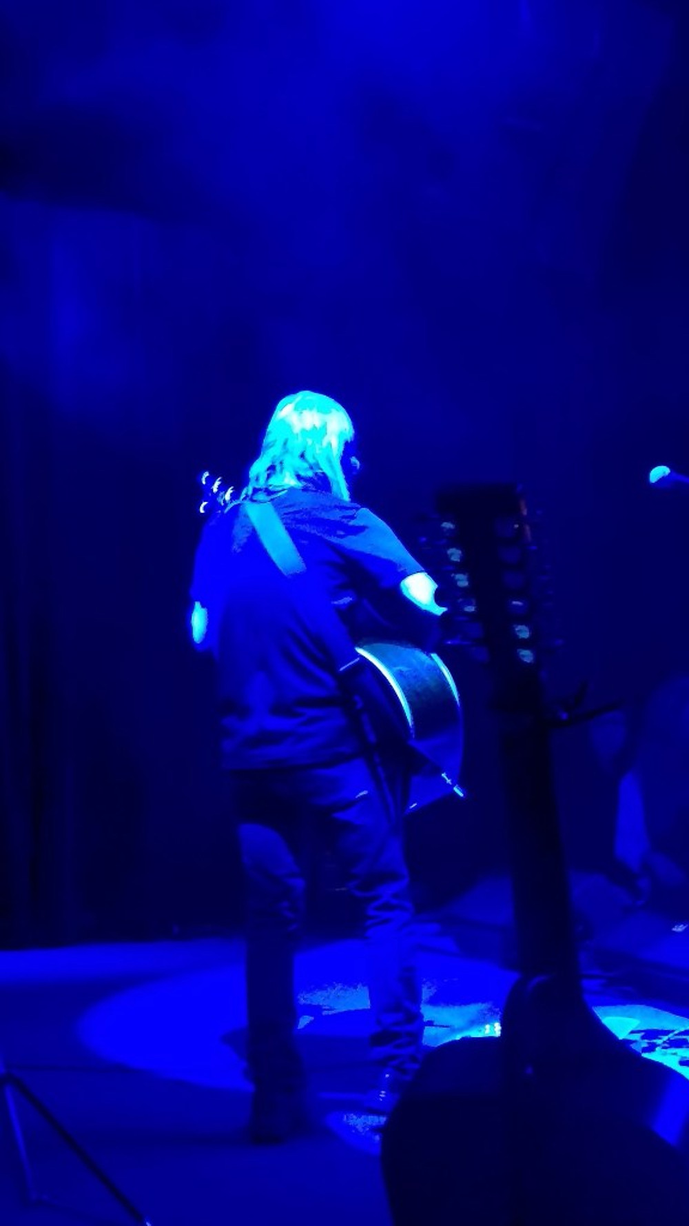 A picture of the back of Tim Reynolds on stage.