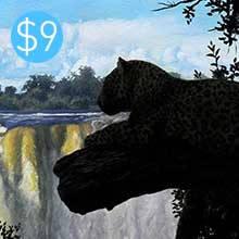 Leopard / Waterfall