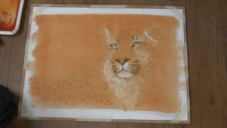 African Leopard - Oils