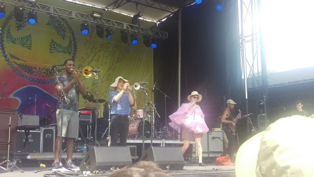 A picture of Rubblebucket on stage during Levitate Music Festival.