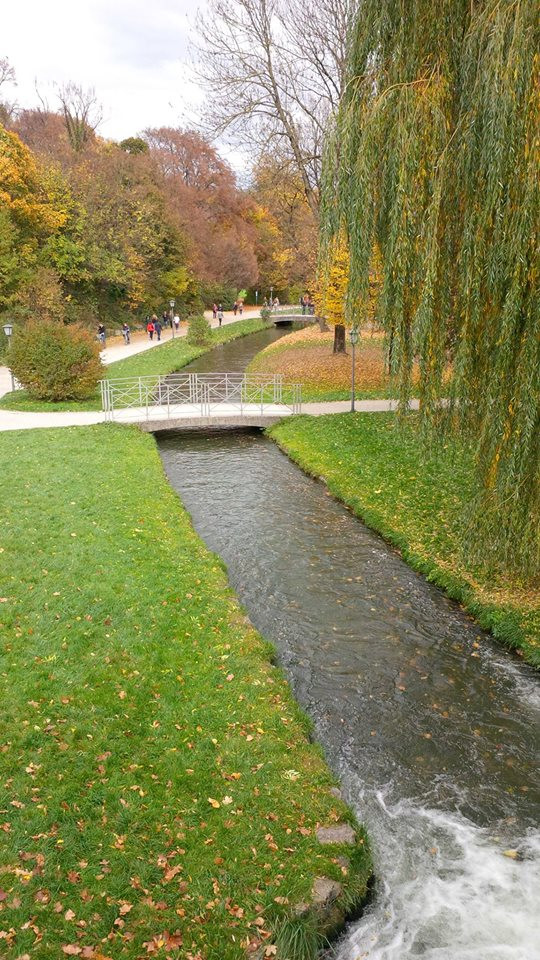 A picture of a creek in the English Gardens in Munich