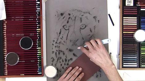 Cheetah - Pastels