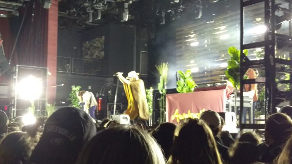 AWOLNATION on stage with potted plants and mellow lighting. Bruno is wearing a poncho and hat.