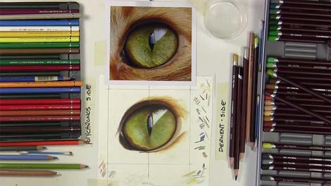 Cats Eye - Colour Pencils