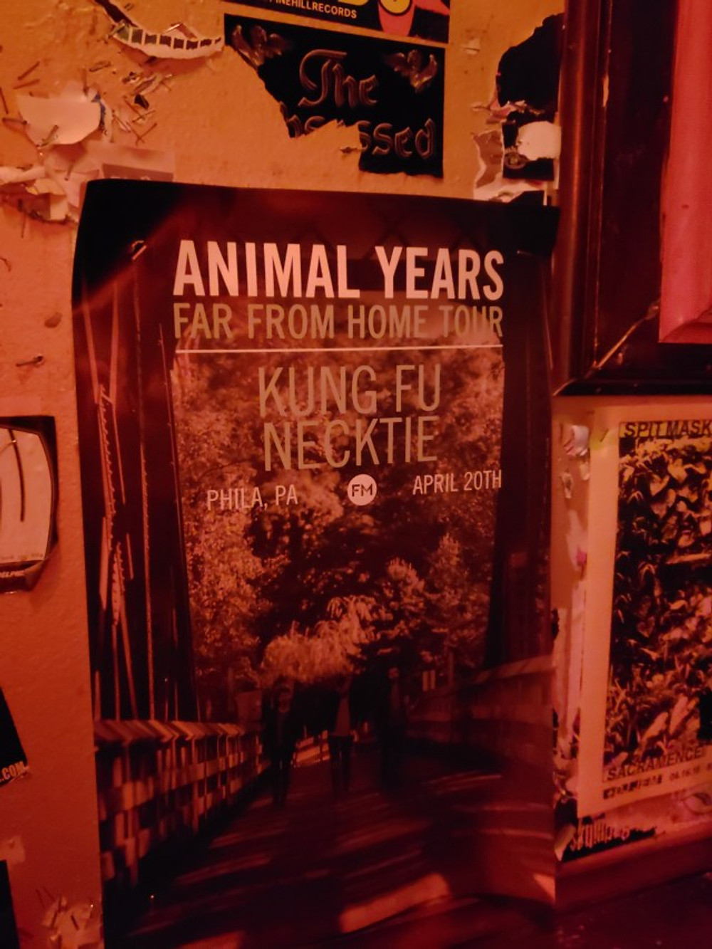 The Animal Years tour poster hanging on the wall.