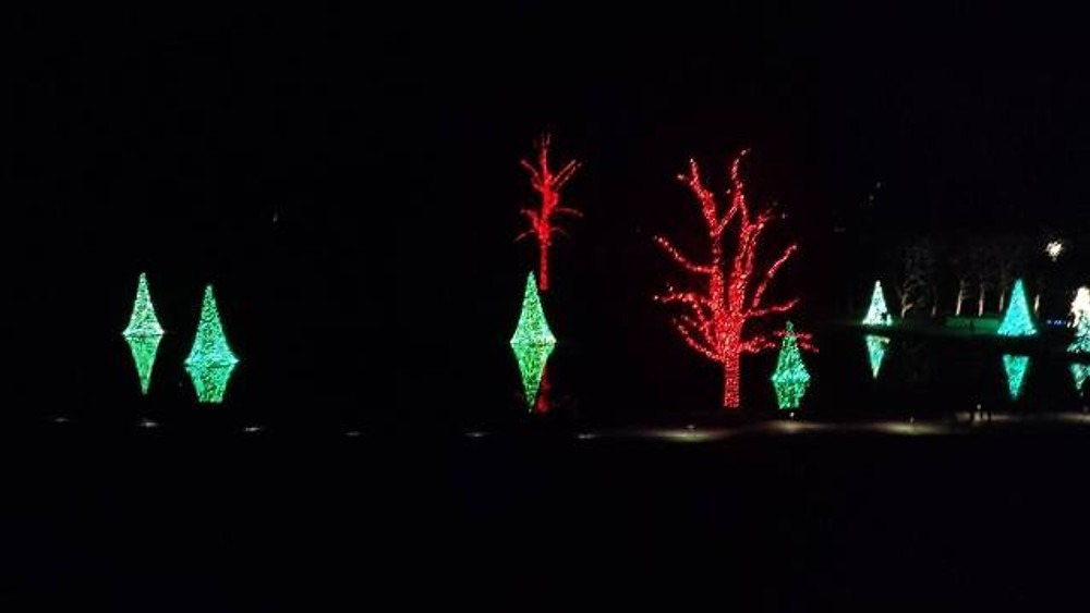 A picture of green lighted trees that appear to be floating on top of the water.