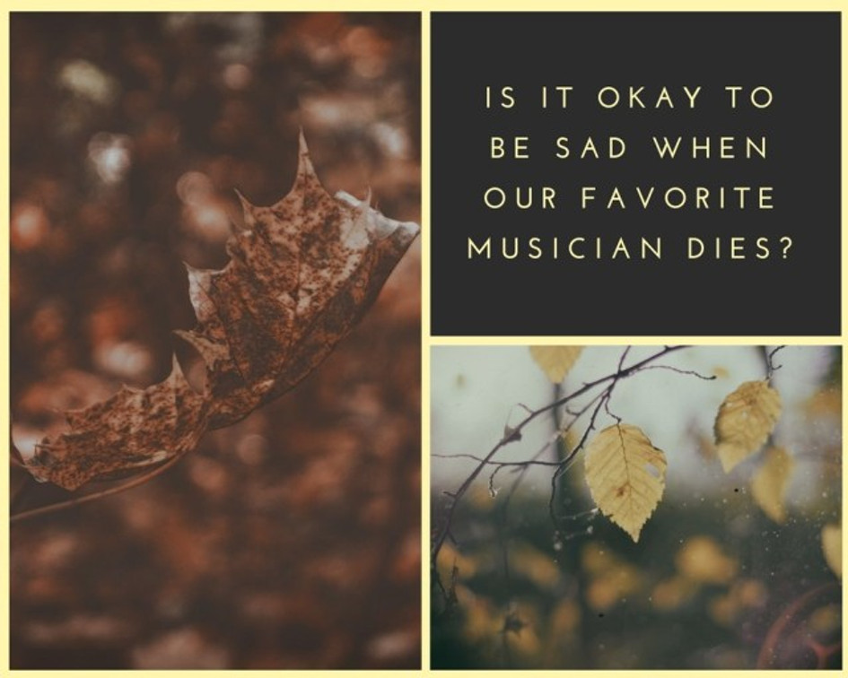 """A picture of some dying leaves along with the graphic """"Is it okay to be sad when our favorite musician dies?"""""""
