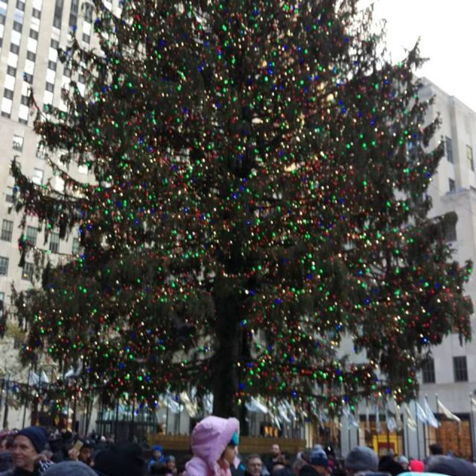A picture of the giant Christmas tree at Rockefeller Center in NYC.