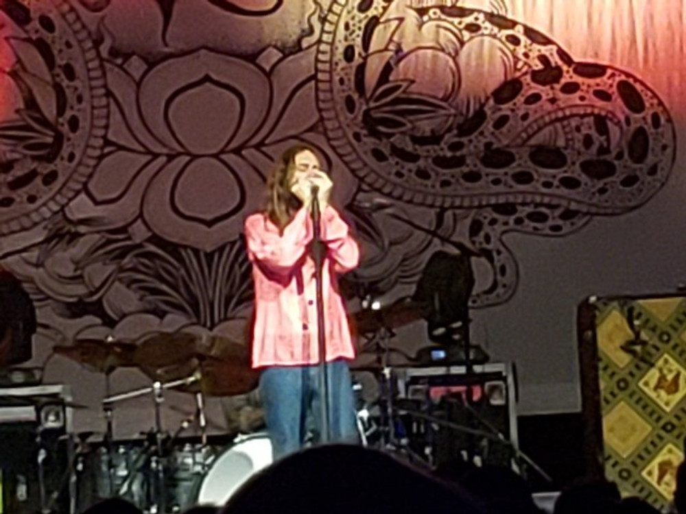 Chris Robinson playing the harmonica during the As The Crow Flies show.