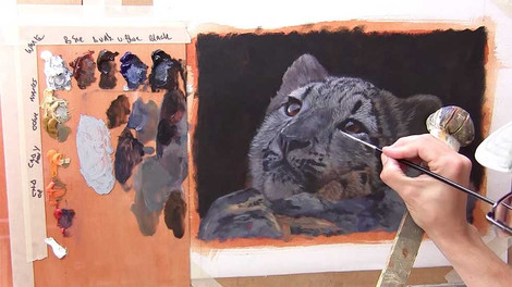 Snow Leopard Cub - Oils