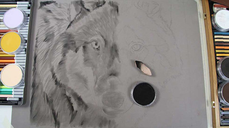 Wolf - Pastels
