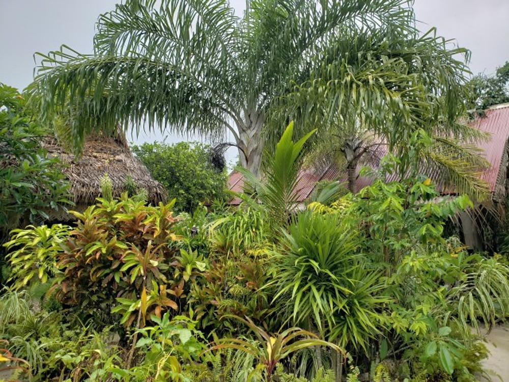 Tiki Village Cultural Center in Moorea