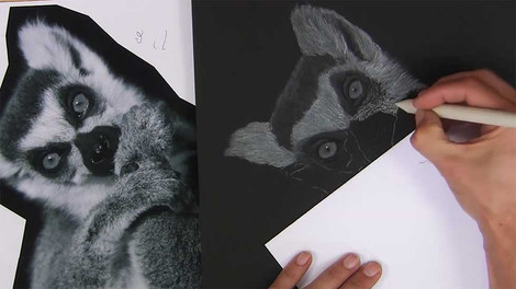 Lemur - Charcoal