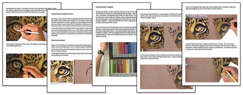 Leopard Eyes - Pastel Tutorial