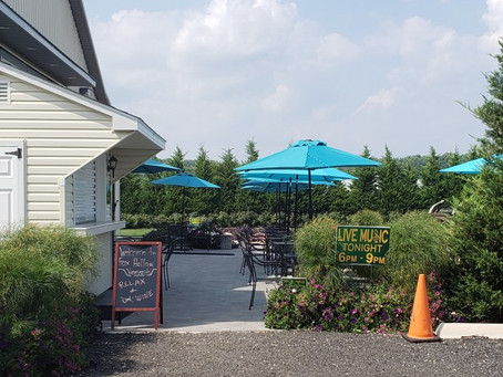Fox Hollow Vineyards – A Winery In the Up and Coming New Jersey Wine Scene!