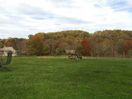 Wine Tasting on an Autumn Day in Chester County, PA