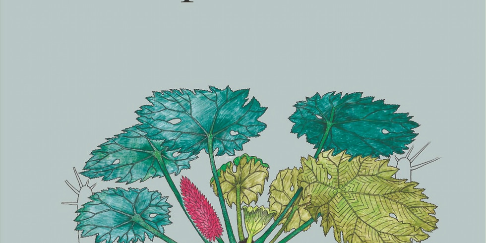 Mappo-Natale con l'Atlante di Botanica Poetica