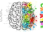 brain-2062055.jpg
