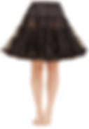 petticoat white bckgrnd.png