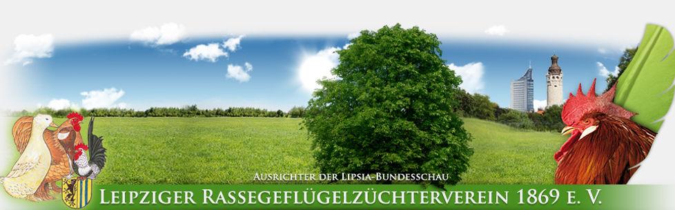 Header_Sommer.jpg