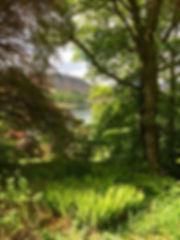 View of lake at Wordsworths cottage.jpg