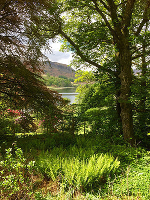 View of lake at Wordsworths cottage.jpg