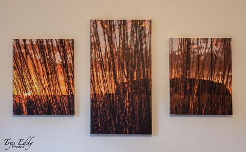 3-piece stretched canvas