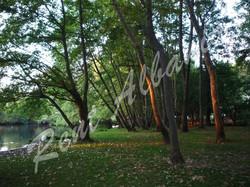 Парк Дрилон