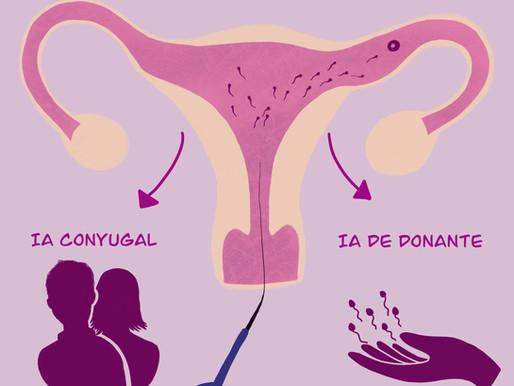 Cómo son los pasos de una inseminación artificial? De qué se trata y cuándo está indicado?