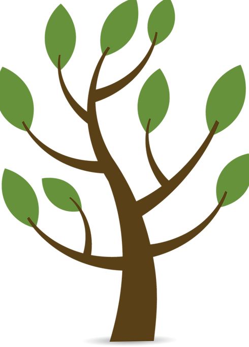 Tree_edited_edited.png