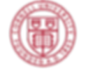 Crest Transparent (seal).png