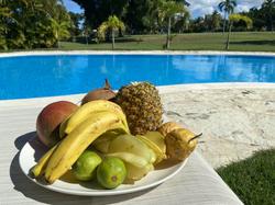 Nos fruits pleins de vitamine