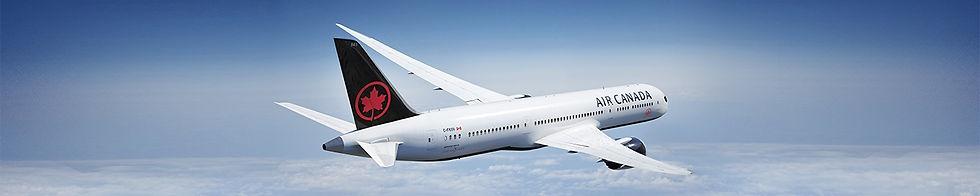 lg-covid19-plane.jpg