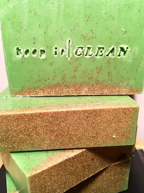 Aloe blend exfoliating soap bar