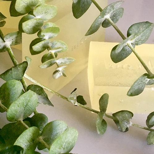 Aloe soap bar