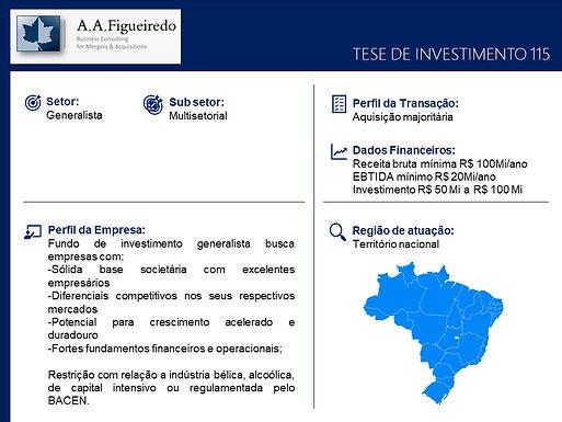 Generalista - Tese de Investimento 115