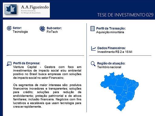 Tecnologia - Tese de Investimento 029