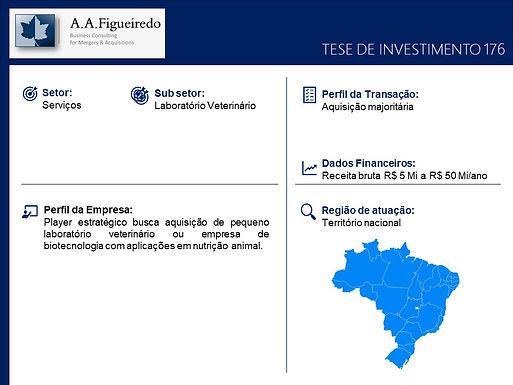 Serviços - Tese de Investimento 176