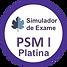 Simulado Exame PSM I.png