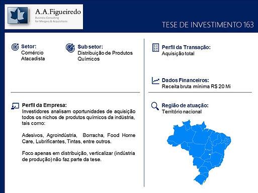 Comércio Atacadista - Tese de Investimento 163