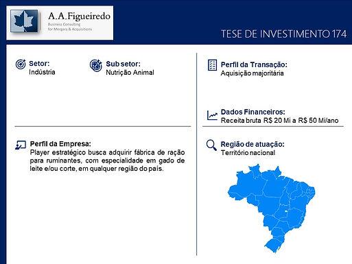 Indústria - Tese de Investimento 174