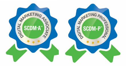 Selos Digital Marketing Professional.png